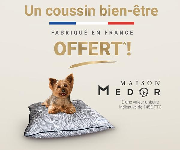 purina-one-20ans-push-petit-chien